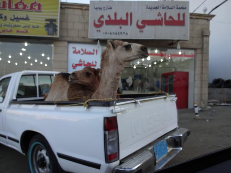 Saudi Shopping